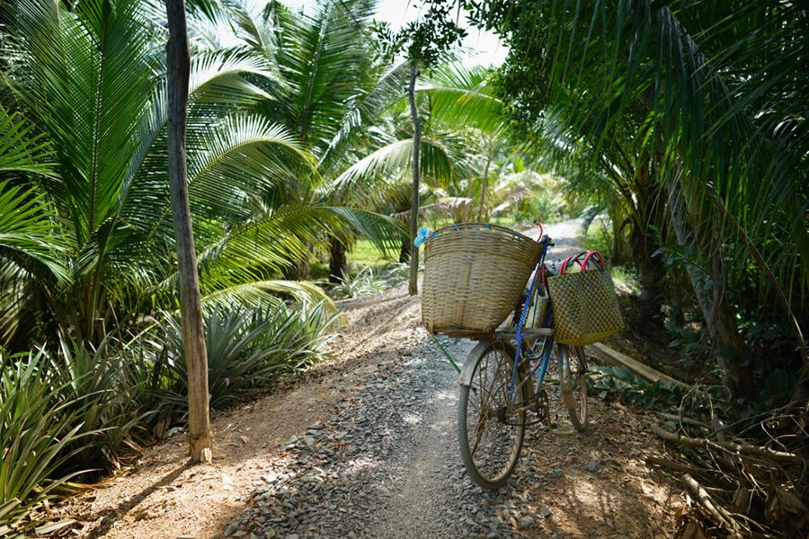 Mekong Delta Two Day Tour