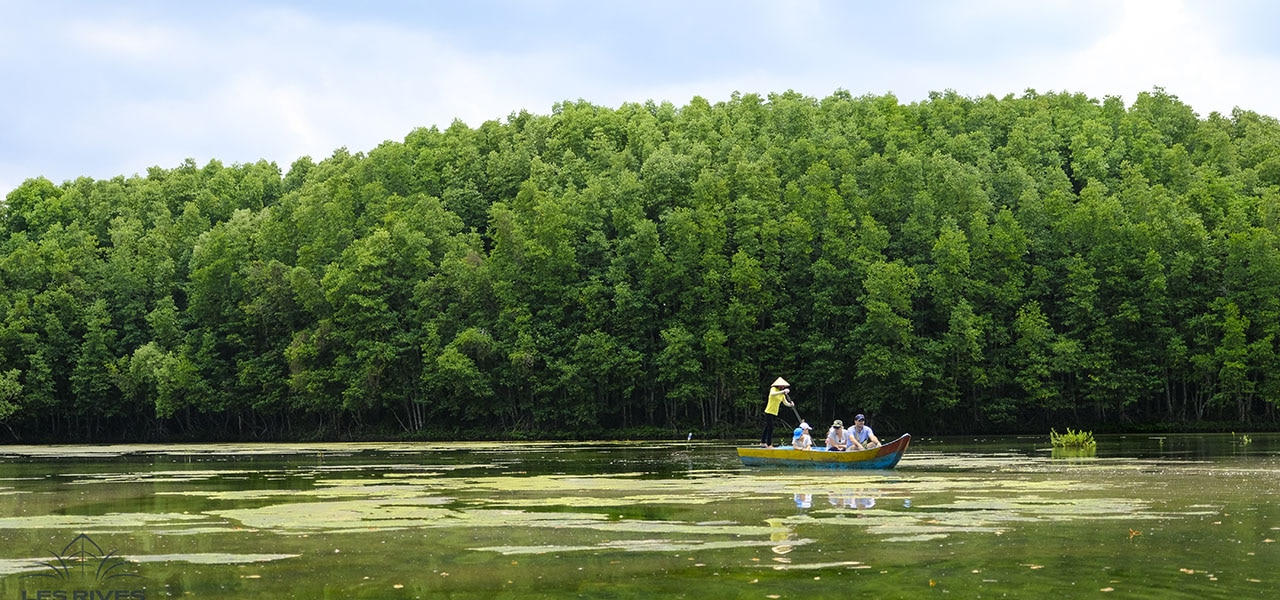 Rowing boat in Can Gio forest